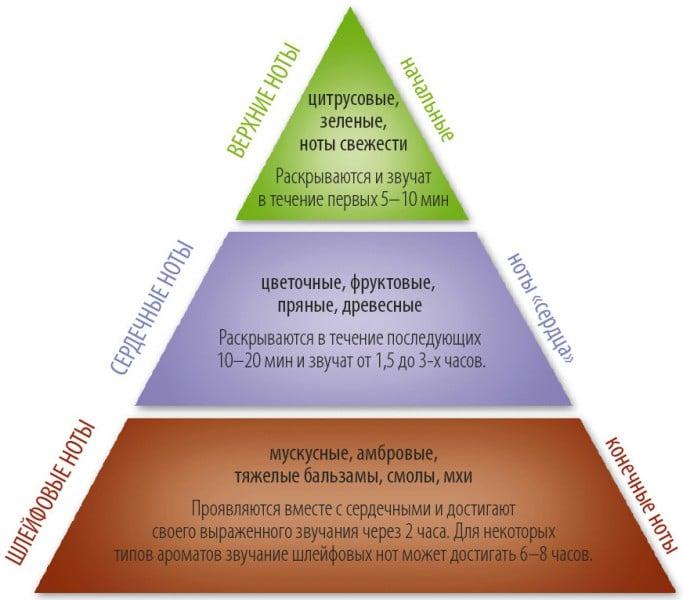 Парфюмерная пирамида. Верхние, сердечные и шлейфовые ноты