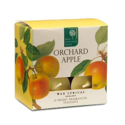 Wax Lyrical Спелое яблоко набор ароматических чайных свечей (12 шт.) 6 ч