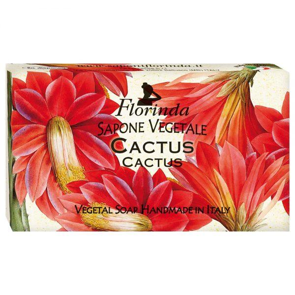 FLORINDA Воздух Осени Кактус растительное мыло 100 г
